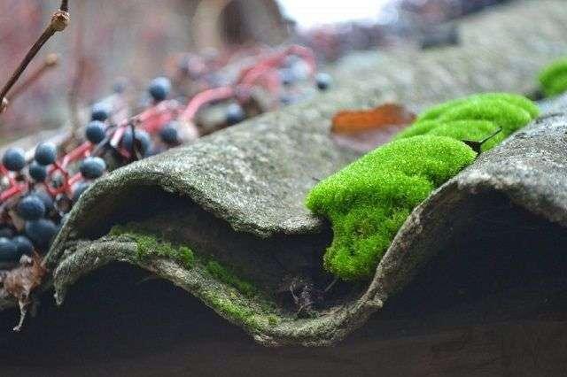 Ремонт дахів: чим закрити дірки і тріщини