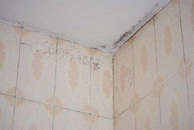 Вентиляція у ванній кімнаті і туалеті