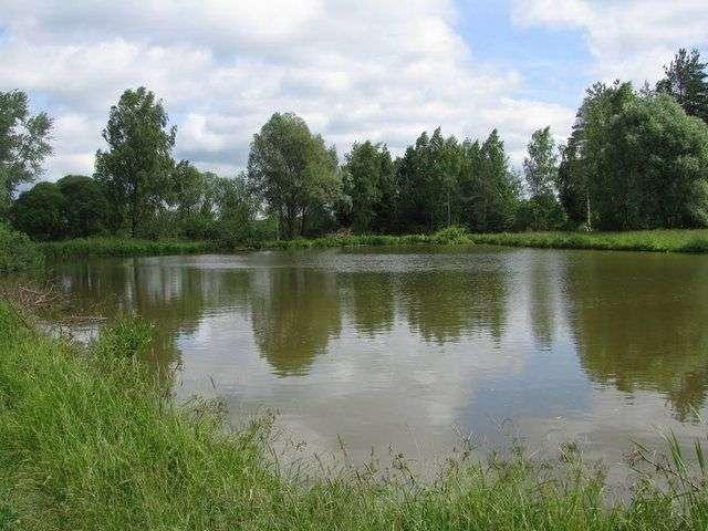 Насос для поливу городу — обираємо найкращий варіант із запропонованих